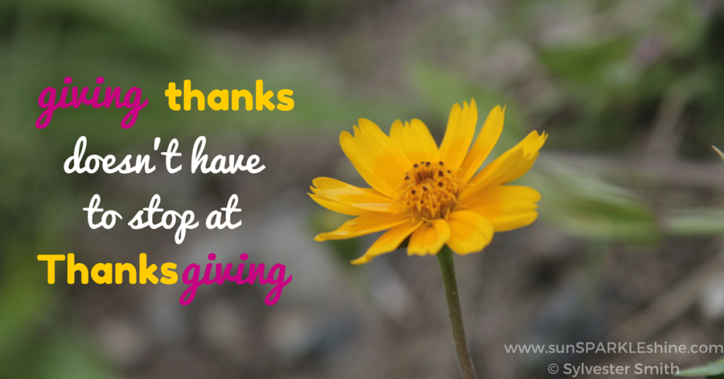 Are you focusing on giving thanks this month? This list will remind you of some things to give thanks for so you can keep growing in gratitude all year.