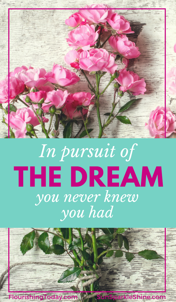 Is it possible to pursue the dream you never knew you had? And do it all with passion and purpose? Three women of the Bible show us how. So if your life has been turned upside down, take heart. You just might be on the verge of an unexpected dream. SunSparkleShine.com and FlourishingToday.com