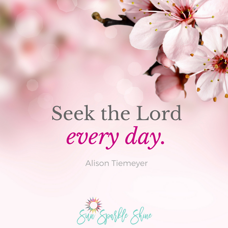 What does personal integrity mean to you? For women of God, it's more than just avoiding lying and stealing. Take this 7 day challenge to find out more. SunSparkleShine.com