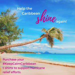 Support Hurricane Relief at SunSparkleShine.com